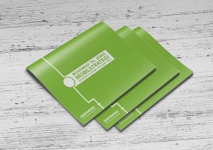 Mobilstrategi: whitepaper